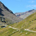 wandern-nach-Meran über die Martin Busch-Hütte